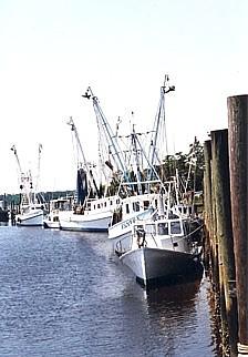 Calabash north carolina for Calabash fishing fleet